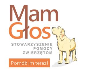 reklama-stowarzyszenie-mam-głos.jpg